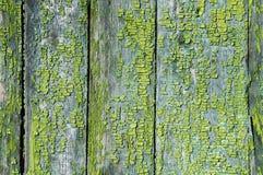 Struttura di vecchie plance di legno fotografia stock