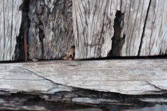 Struttura di vecchio legno del teck Fotografie Stock Libere da Diritti