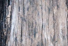Struttura di vecchio legno del teck Immagine Stock Libera da Diritti