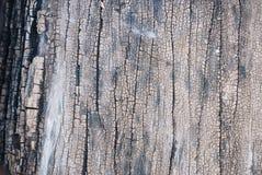 Struttura di vecchio legno del teck Immagini Stock