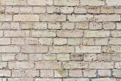 Struttura del muro di mattoni beige Fotografie Stock Libere da Diritti