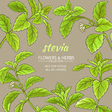 Struttura di vettore di stevia Fotografie Stock