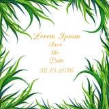 Struttura dipinta a mano dell'erba verde dell'acquerello Può essere usato come elemento decorativo per la cartolina d'auguri, inv illustrazione di stock