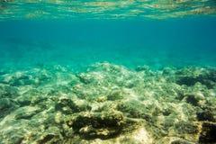 Struttura e fauna subacquee in mare ionico immagine stock libera da diritti