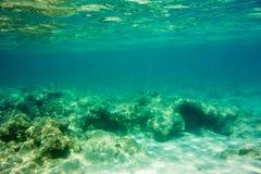 Struttura e fauna subacquee in mare ionico fotografie stock