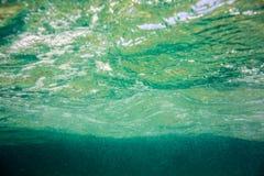 Struttura e fauna subacquee in mare ionico fotografia stock