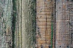 Struttura e fondo del recinto di legno con una ragnatela Immagini Stock Libere da Diritti