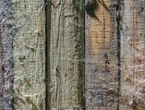 Struttura e fondo del recinto di legno con una ragnatela Fotografie Stock