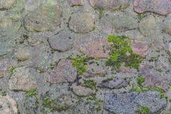 Struttura e fondo della parete di pietra per comporre fotografie stock