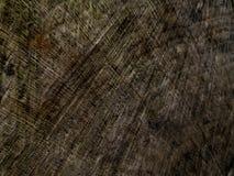 Struttura e fondo di legno della parete per comporre fotografia stock libera da diritti