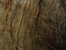 Struttura e fondo di legno della parete per comporre immagini stock libere da diritti