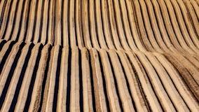 Struttura e forma su terra coltivata con la piantatura delle patate fotografia stock libera da diritti