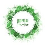 Struttura floreale con le foglie verdi tropicali esotiche royalty illustrazione gratis