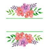Struttura floreale dell'acquerello con le linee verde ed i mazzi illustrazione di stock