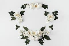 Struttura floreale di estate con le rose selvatiche bianche Immagine Stock