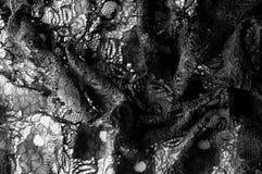 Struttura, fondo, modello Tessuto di pizzo nero Fondo o fotografia stock libera da diritti