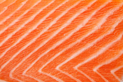 Struttura fresca dei salmoni rossi Fotografia Stock