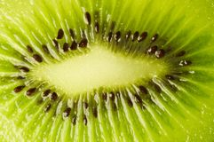 Struttura fresca del kiwi Fotografia Stock
