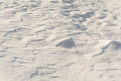 Struttura fresca della neve Immagini Stock Libere da Diritti