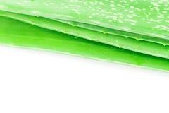 Struttura fresca della pelle di vera dell'aloe del primo piano su fondo bianco, bellezza Fotografia Stock