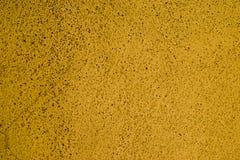 Struttura gialla del fondo della parete Immagini Stock