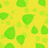 Struttura gialla della parete con la pittura verde della foglia Immagine Stock Libera da Diritti