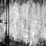 Struttura granulare di legno Fotografia Stock