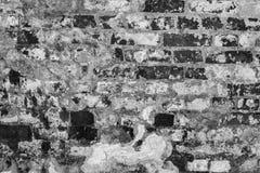 Struttura grigia di vecchia parete di una costruzione antica con uno strato rovinato del gesso ed i mattoni incrinati Immagine Stock Libera da Diritti