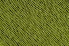 Struttura increspata verde chiaro del fondo del tessuto Fotografie Stock Libere da Diritti