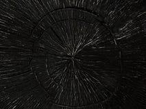 Struttura la quercia dell'albero bruciata fotografie stock
