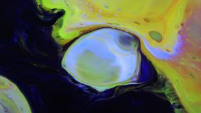 Struttura liquida di concetto di artistico del modello della pittura astratta di colore archivi video