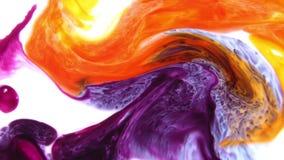 Struttura liquida di concetto di artistico del modello della pittura astratta di colore stock footage