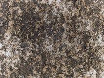 Struttura a macroistruzione - calcestruzzo - pavimentazione scolorita Fotografia Stock Libera da Diritti