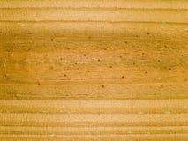 Struttura a macroistruzione - legno - granulo Immagine Stock