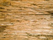 Struttura a macroistruzione - legno - granulo Immagini Stock