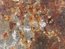 Struttura a macroistruzione - metallo - vernice arrugginita della sbucciatura Fotografia Stock