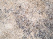 Struttura a macroistruzione - pietra - roccia chiazzata Fotografia Stock Libera da Diritti