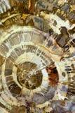 Struttura minerale astratta Fotografie Stock Libere da Diritti
