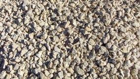 Struttura moderna della ghiaia Piccole pietre, piccole rocce, ciottoli in molte tonalità di colore grigio e bianco Fondo di picco Fotografia Stock Libera da Diritti
