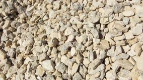 Struttura moderna della ghiaia Piccole pietre, piccole rocce, ciottoli in molte tonalità di colore grigio e bianco Fondo di picco Immagine Stock Libera da Diritti