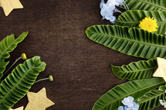 Struttura naturale con le stelle dorate ed i fiori tropicali in felce Immagine Stock