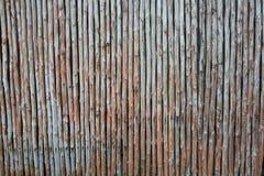 Struttura naturale senza cuciture della parete di bambù verticale Fotografia Stock Libera da Diritti