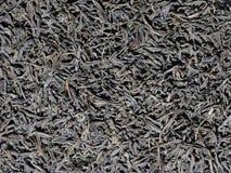 Struttura nera secca delle foglie di tè Immagini Stock Libere da Diritti