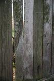 Struttura o priorità bassa di legno Fotografie Stock Libere da Diritti
