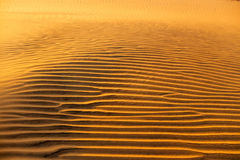 Struttura ondulata sabbiosa gialla delle dune Fotografie Stock