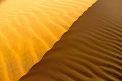 Struttura ondulata sabbiosa gialla delle dune Fotografia Stock Libera da Diritti