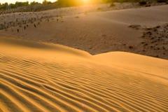 Struttura ondulata sabbiosa gialla delle dune Fotografie Stock Libere da Diritti