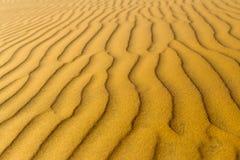 Struttura ondulata sabbiosa gialla delle dune Immagini Stock Libere da Diritti