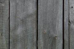 Struttura organica di legno grigia naturale Immagini Stock Libere da Diritti