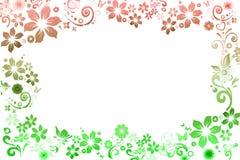 Struttura orizzontale con i fiori su un fondo bianco Immagini Stock